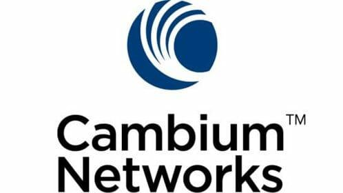 cambium-new